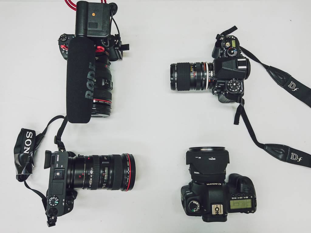 Camera body choices for beginners