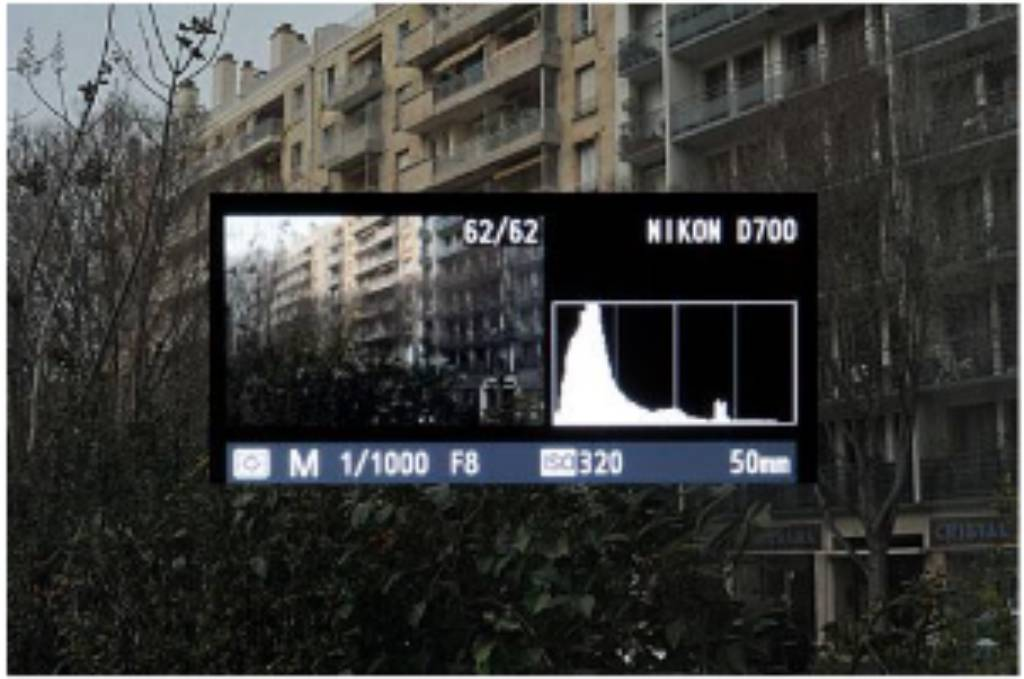Histogram for people just starting up