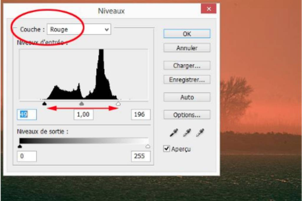 Histogram processing continued