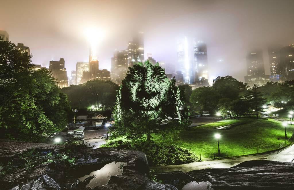 Philippe Echaroux Central Park Art
